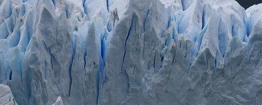The Glacier Up Close by Andrei Fried