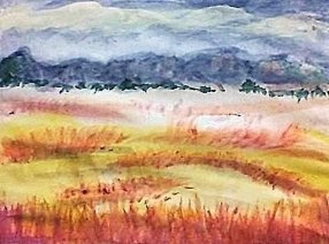 The Grasslands by Anna Lewis