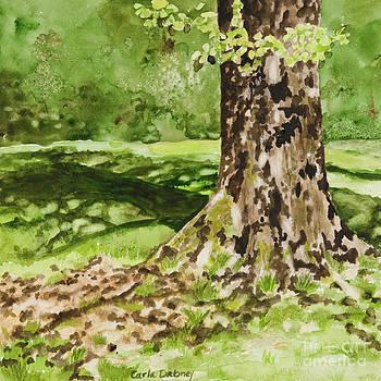 The green grass grew all around by Carla Dabney