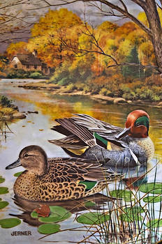 The Green-Winged Teal by Bart Jerner by Susan Leggett
