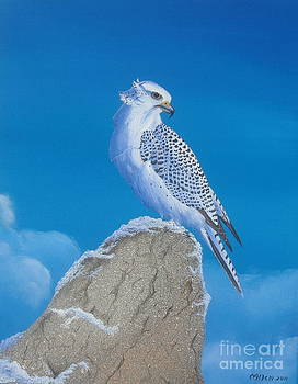 The Gyr Falcon by Michael Allen