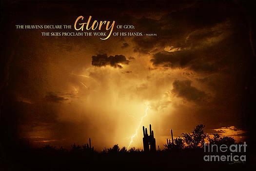 The Heavens Declare by Shevon Johnson