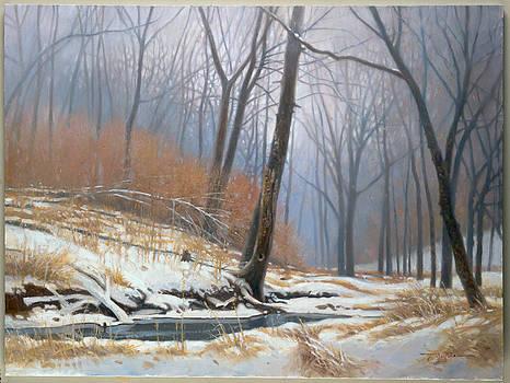 The Hush Of Winter by Tom Heflin