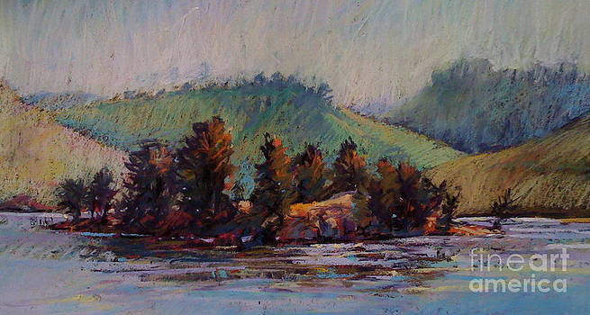 The Island by Pamela Pretty