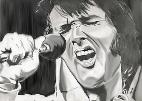 The King of Rock'n Roll by Erwin Verhoeven