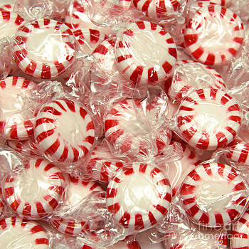 Andee Design - The Land Of Peppermint Candy Square