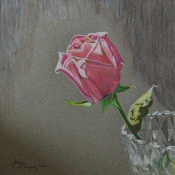 The last rose by Jody Neugebauer
