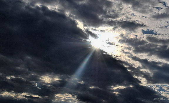 The light by Marija Djedovic