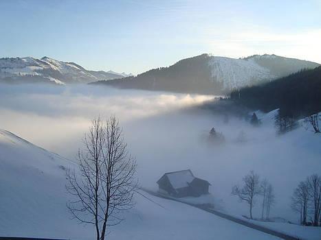 The Light on the Fog by Benjamin Austin