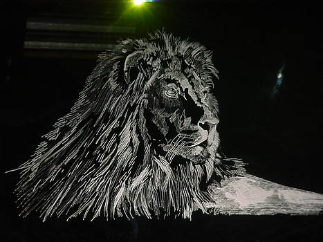 The Lion by Robin Hewitt