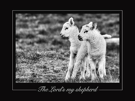 The Lord's my Shepherd by David McFarland