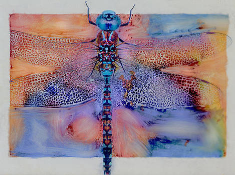 The Magic Dragonfly by JDon Cook
