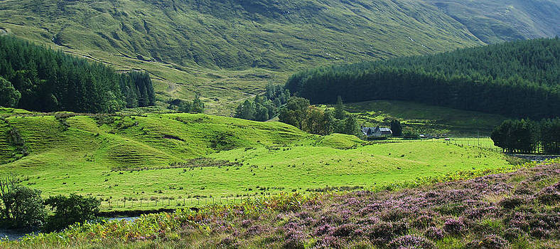 The Mains of Dalbreac by Steve Watson