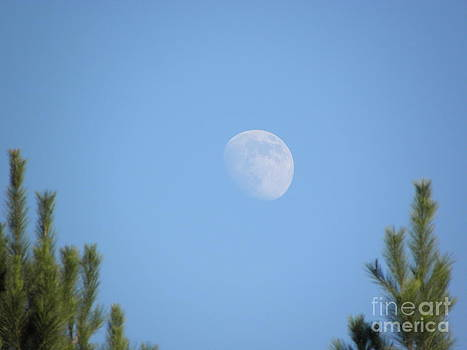 The man in the moon by Cindy Hudson