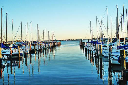 The Marina by Shirley  Taylor