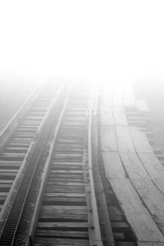 The Misty Cog by Lynn Vidler