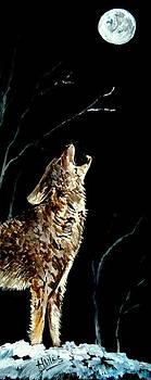 Amalia Jonas - The Night of the Wolf