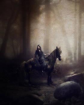 The night rider by Cindy Grundsten