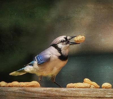 The NutCracker by Pat Abbott