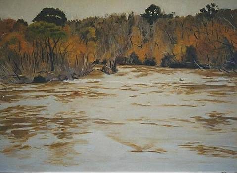 The Ocmulgee River Jones County Ga by Terry Forrest
