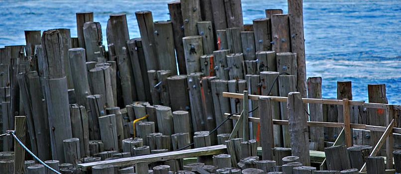 Michelle Cruz - The Old Ferry Docks