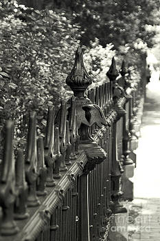 The Old Iron Fence by Leaetta Mitchell