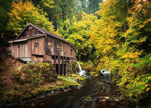 The Old Mill by Brian Bonham