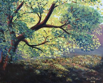 The Old Oak by Don Hutchison