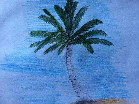 The Palm  by David Stich
