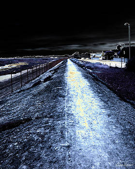 Diana Haronis - The Path
