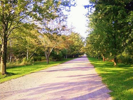 The Path by Pratima Shukla