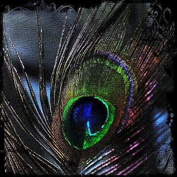 Daryl Macintyre - The Peacock Feather