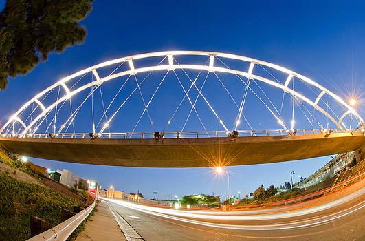 Margaret Pitcher - The Pedestrian Bridge