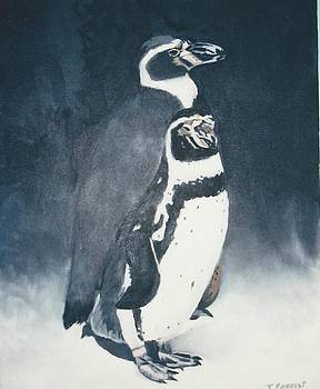 The Penguins by Terry Forrest