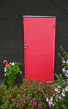 The Pink Door by Seth Shotwell
