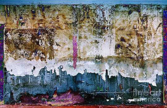Warren Sarle - The Pink Gash A5