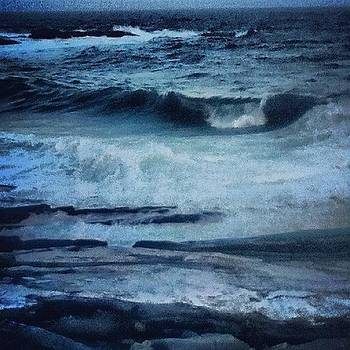 The Point Is Gorgeous Tonight by Tracey Manning