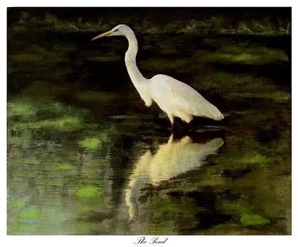 The Pond by Eddie Glass