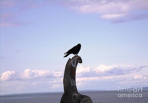 The Raven by Donna Parlow
