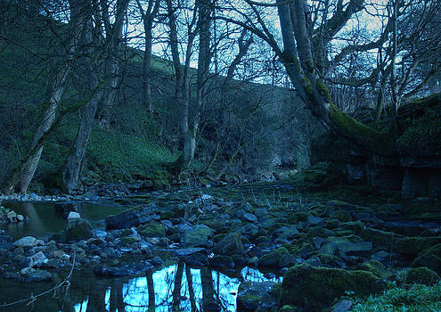 The River Nidd by Steve Watson
