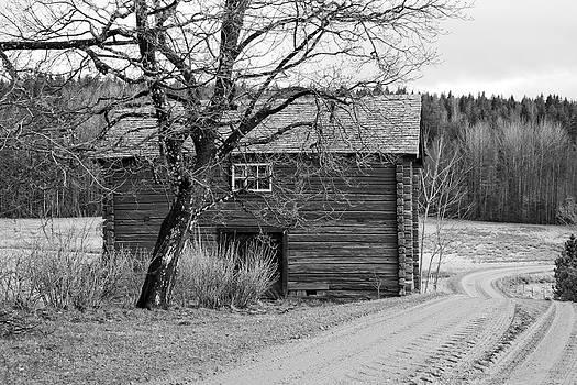 The Road Back Home B/W by Fredrik Ryden
