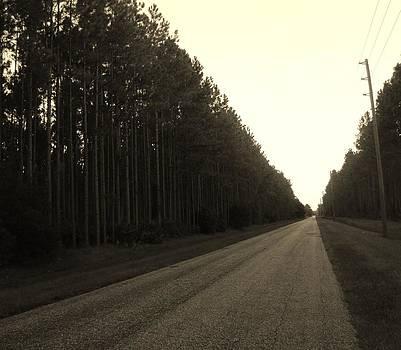 The Road to Nowhere by Brandi Jones