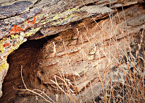 Gilbert Artiaga - The Rock Facing
