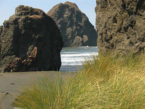 The Rocky Coast by Lucie Buchert