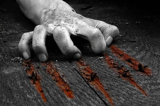 The scratch by Thomas Splietker