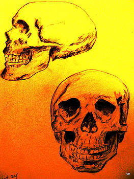 Forartsake Studio - The Scull - A Study