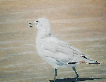 The Seagull by Terry Forrest