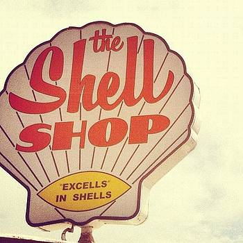 The Shell Shop - Morro Bay #california by Veronica Rains