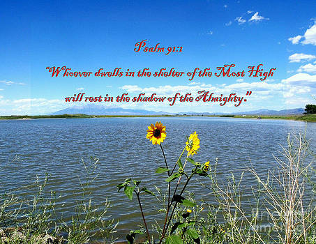 The Shelter of the Most High by Donna Parlow