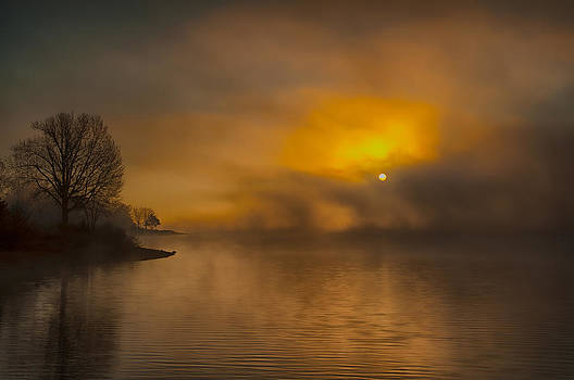 The Silence of Morning by Ron  McGinnis